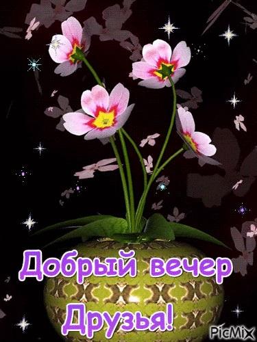 Доброго вечера друзья картинки и открытки (5)