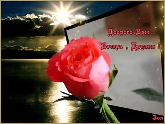Доброго вечера друзья картинки и открытки (7)