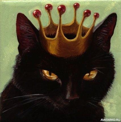 Классные картинки на аву черная кошка (24)