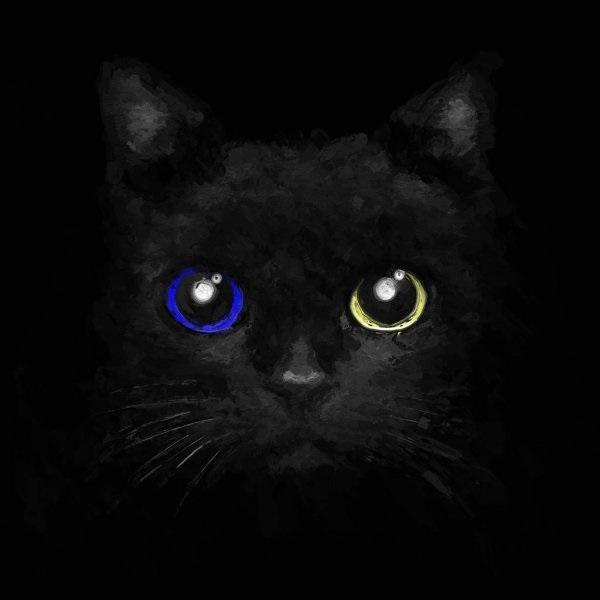 Классные картинки на аву черная кошка (4)