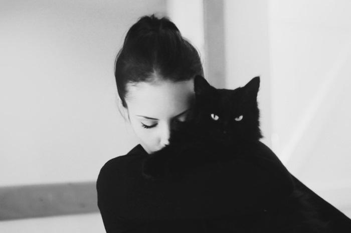 Классные картинки на аву черная кошка (5)