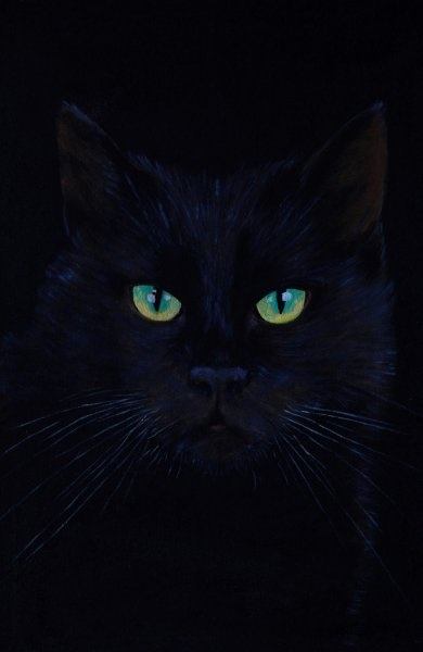 Классные картинки на аву черная кошка (6)