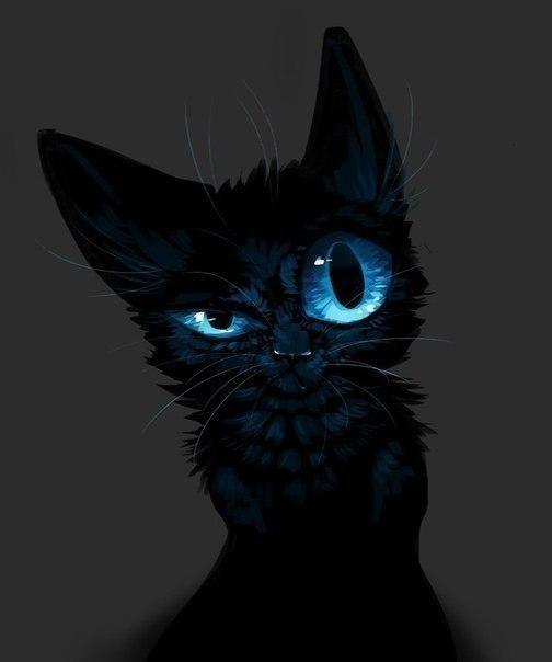 Классные картинки на аву черная кошка (9)