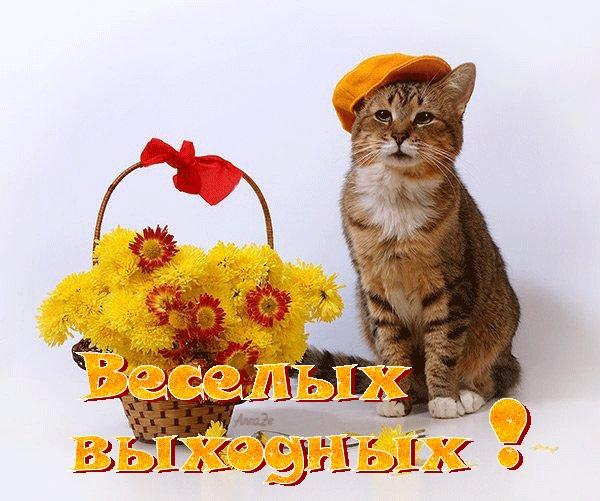 Поздравления с выходными картинки красивые (1)