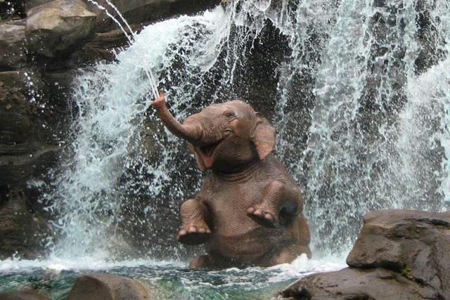 Всемирный день слона 12 августа, праздник - картинки (11)