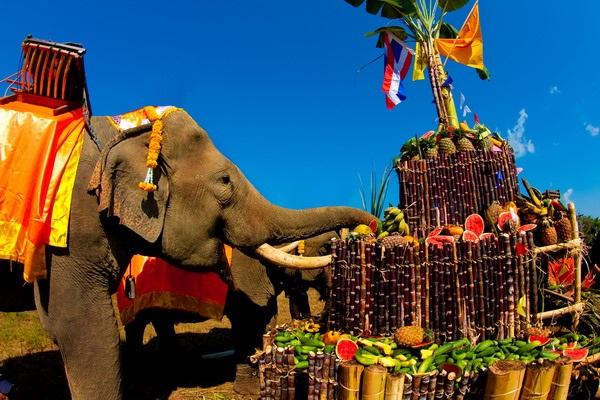 Всемирный день слона 12 августа, праздник - картинки (15)