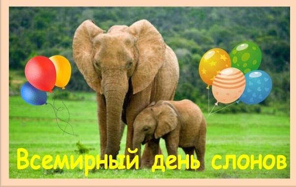 Всемирный день слона 12 августа, праздник - картинки (19)