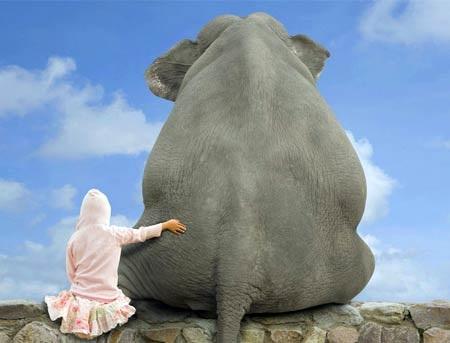 Всемирный день слона 12 августа, праздник - картинки (3)