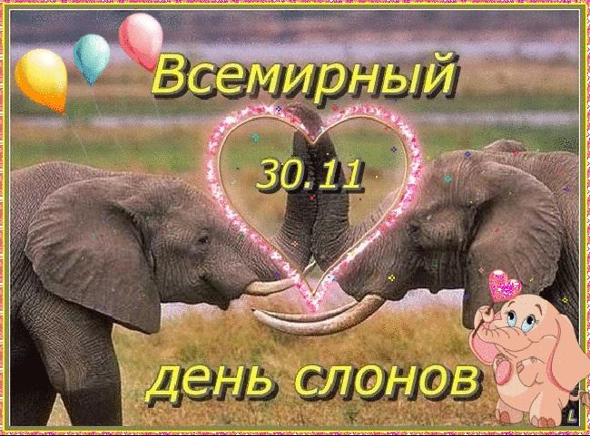 Всемирный день слона 12 августа, праздник - картинки (6)