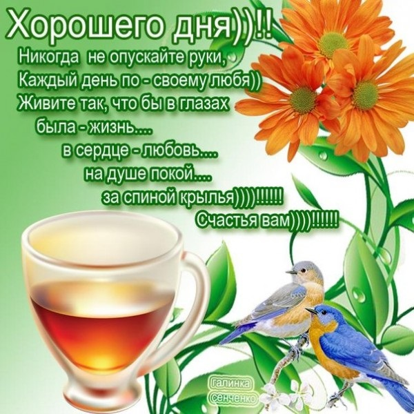 Доброе сентябрьское утро яркие открытки для друзей (16)