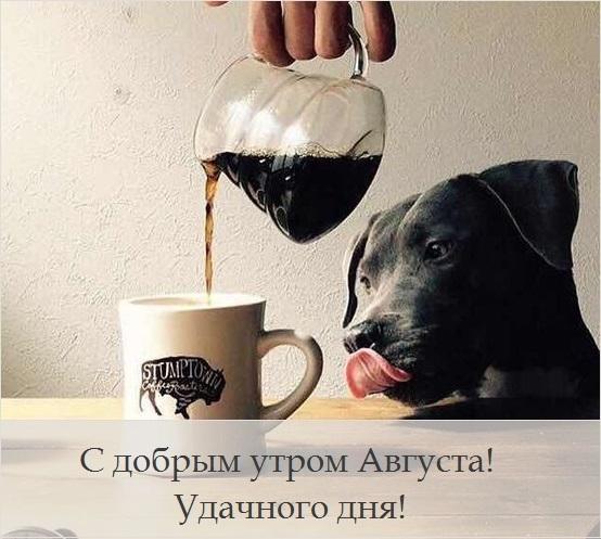 Доброе утро августа картинки с кофе и чаем - подборка (1)