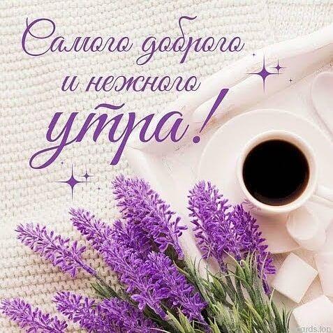Доброе утро августа картинки с кофе и чаем - подборка (25)