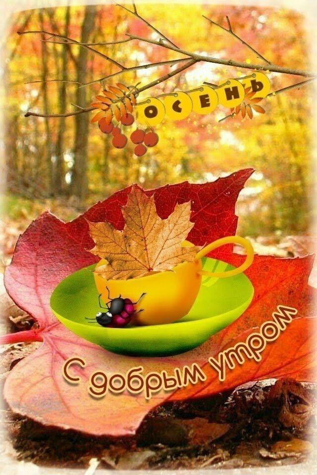 Доброе утро осеннее настроение - подборка открыток (10)