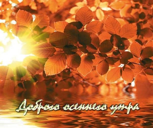 Доброе утро осеннее настроение - подборка открыток (24)