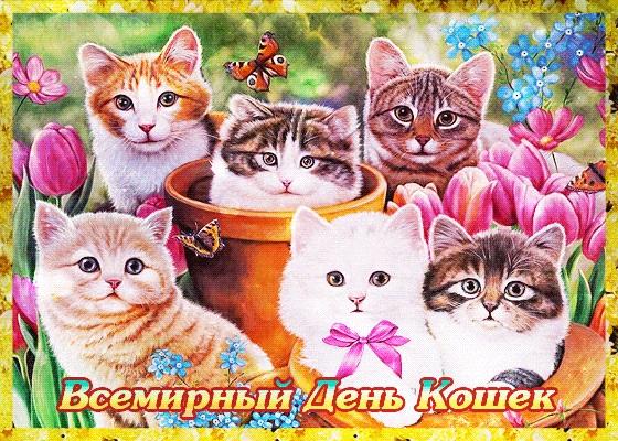 Картинки и открытки с днем кошек на 8 августа (10)