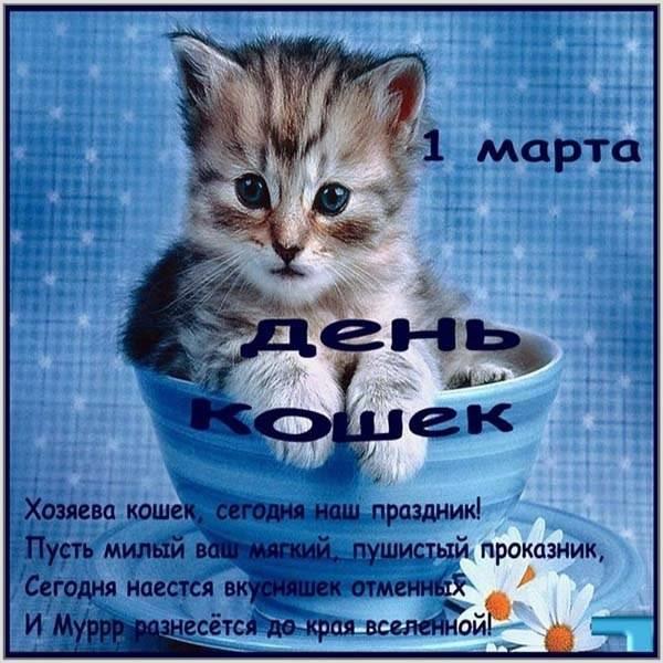Картинки и открытки с днем кошек на 8 августа (16)