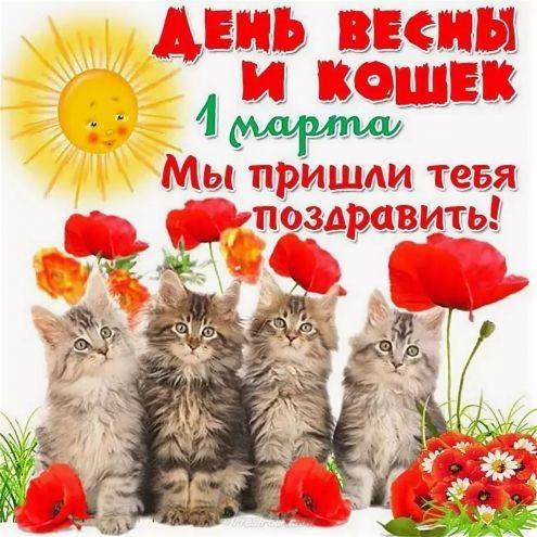 Картинки и открытки с днем кошек на 8 августа (2)
