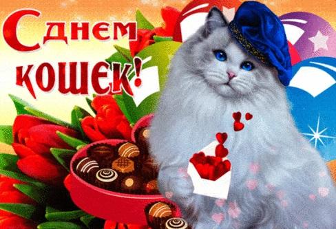 Картинки и открытки с днем кошек на 8 августа (3)