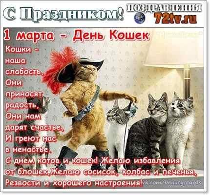 Картинки и открытки с днем кошек на 8 августа (5)