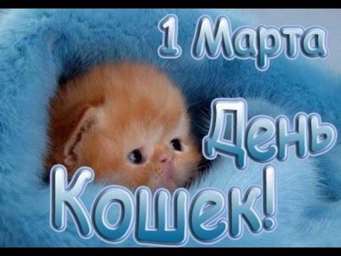 Картинки и открытки с днем кошек на 8 августа (8)
