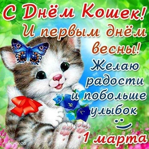 Картинки и открытки с днем кошек на 8 августа (9)