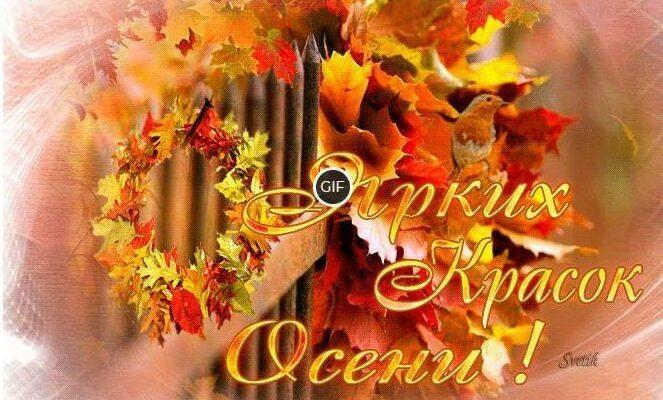 Красивые картинки доброго сентябрьского дня (12)