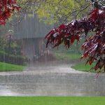 Красивые картинки дождь в сентябре — новая сборка 2021 год