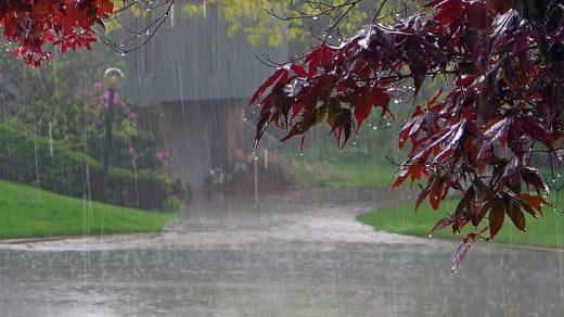 Красивые картинки дождь в сентябре   новая сборка 2021 год (12)