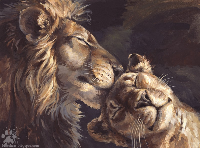 Львица целует льва фото красивые (16)