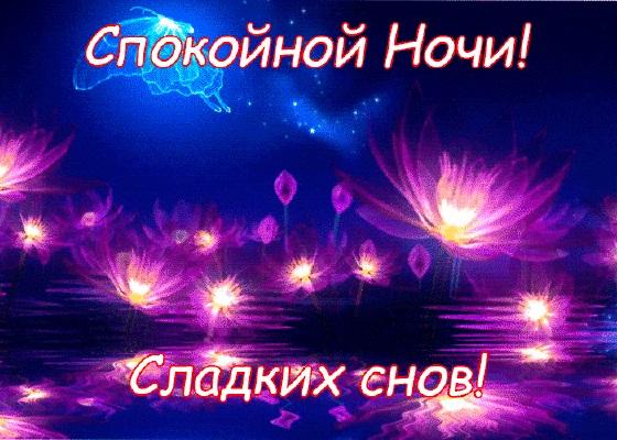 Милые фото доброй ночи сентябрь - подборка открыток (20)