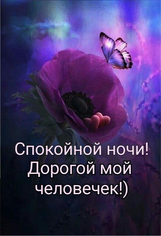 Милые фото доброй ночи сентябрь - подборка открыток (3)