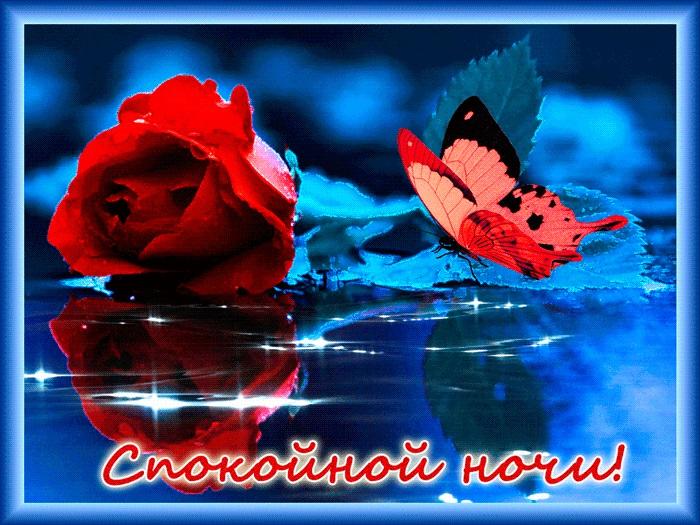 Милые фото доброй ночи сентябрь - подборка открыток (9)