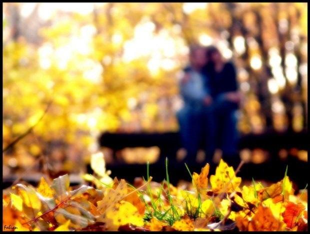 Сентябрь удивительные картинки со стихами - подборка (12)