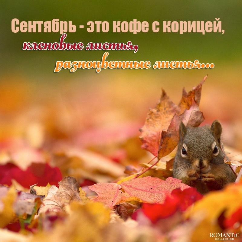 Сентябрь удивительные картинки со стихами - подборка (19)