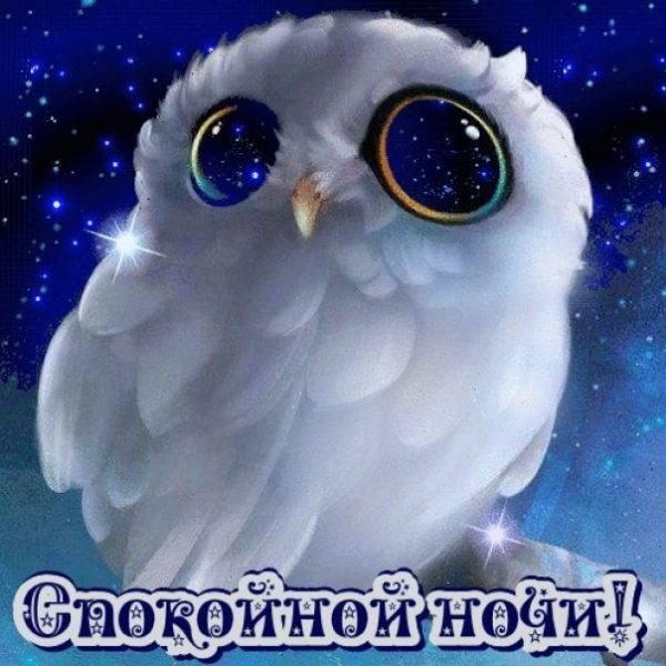Спокойной ночи малыши открытки (2)
