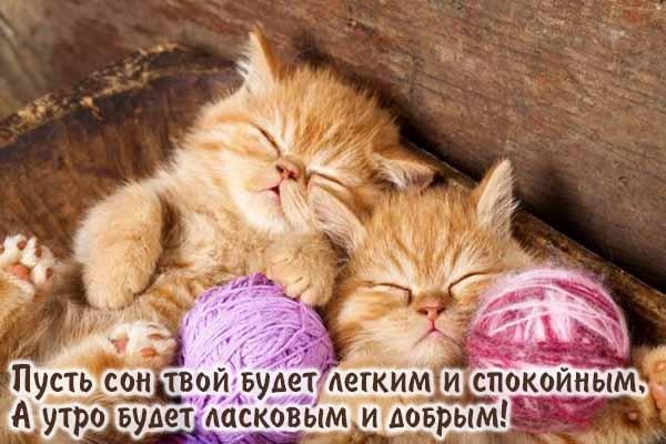 Спокойной ночи малыши открытки (7)