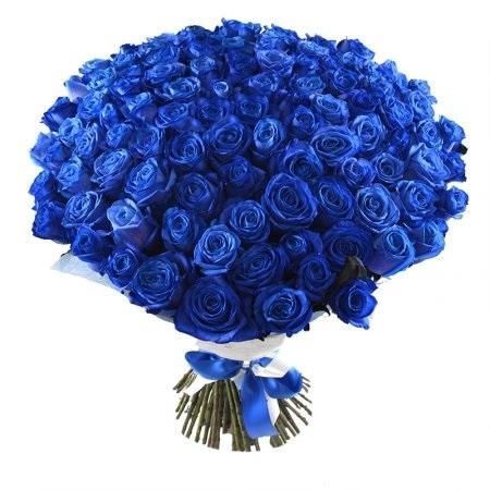 С Днем Рождения синие розы - подборка открыток (1)