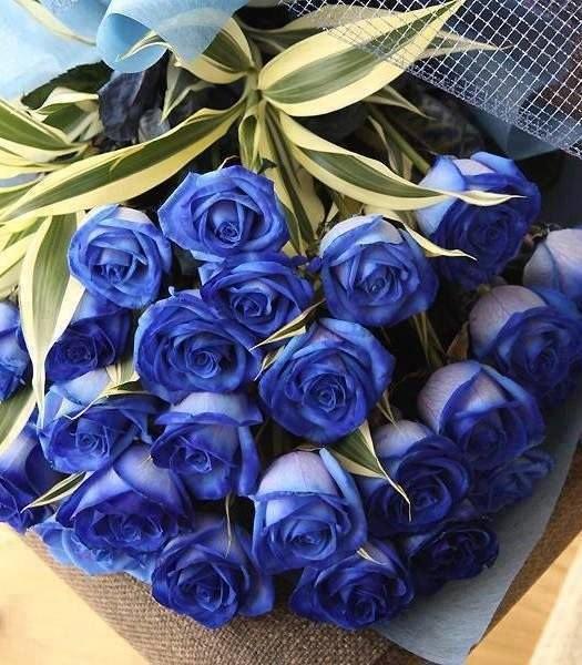 С Днем Рождения синие розы - подборка открыток (17)