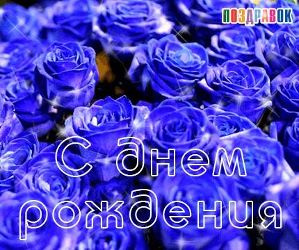 С Днем Рождения синие розы - подборка открыток (20)
