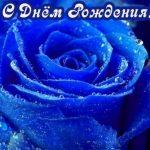 С Днем Рождения синие розы — подборка открыток