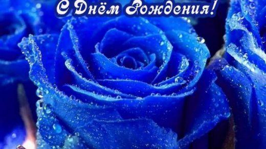 С Днем Рождения синие розы   подборка открыток (21)