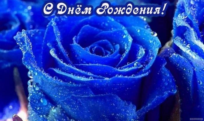 С Днем Рождения синие розы - подборка открыток (21)