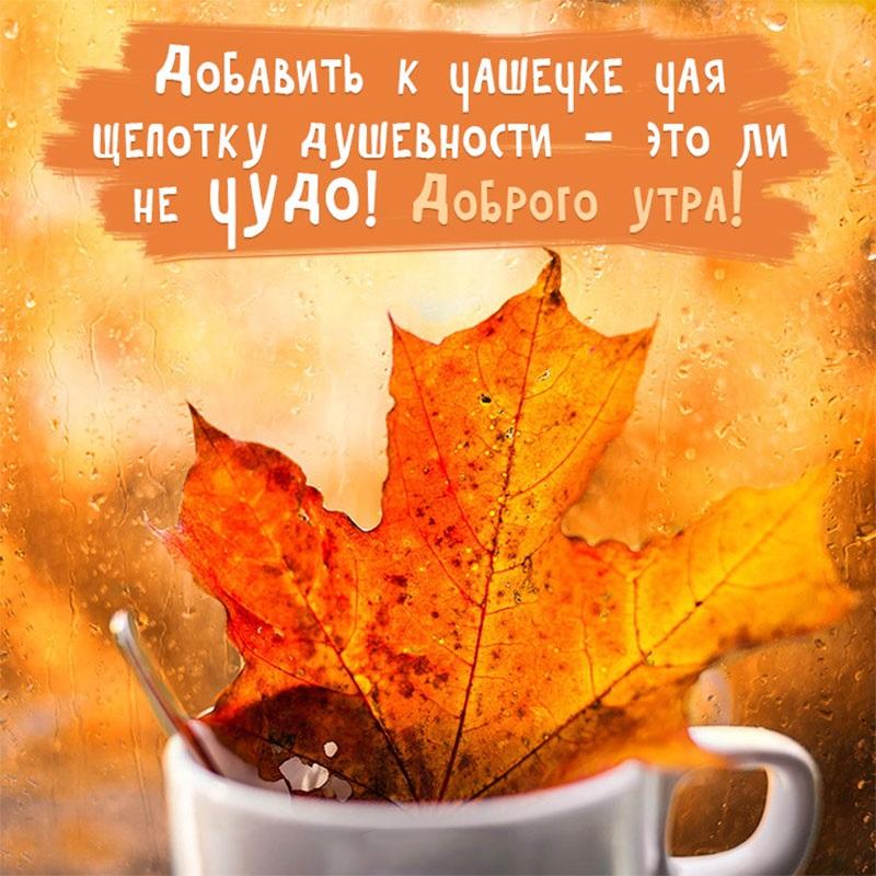 С добрым утром сентябрь - красивые картинки и открытки (20)