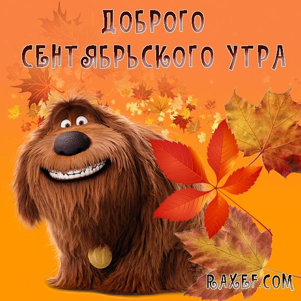 С добрым утром сентябрь - красивые картинки и открытки (3)