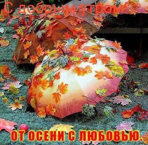 С добрым утром сентябрь - красивые картинки и открытки (5)