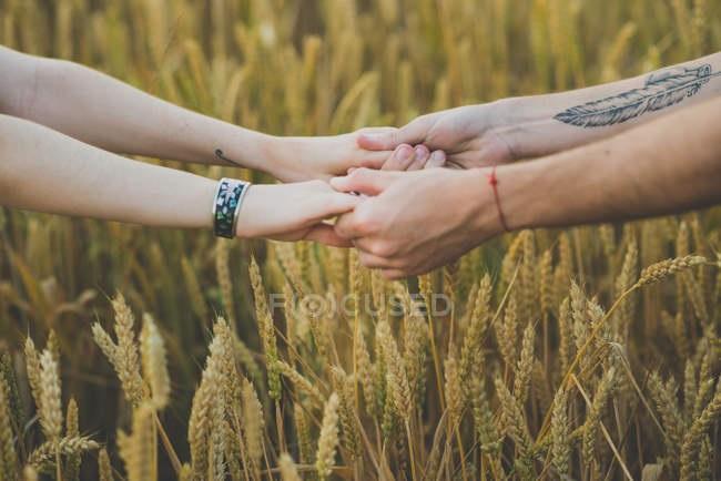 картинка рука женская и мужская (14)
