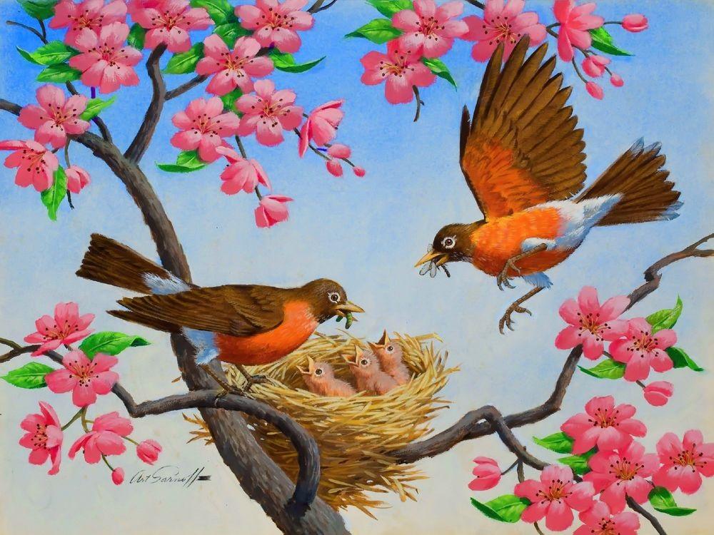 Гнездо на дереве - красивые рисунки для детей (10)