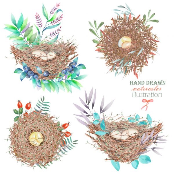 Гнездо на дереве - красивые рисунки для детей (16)