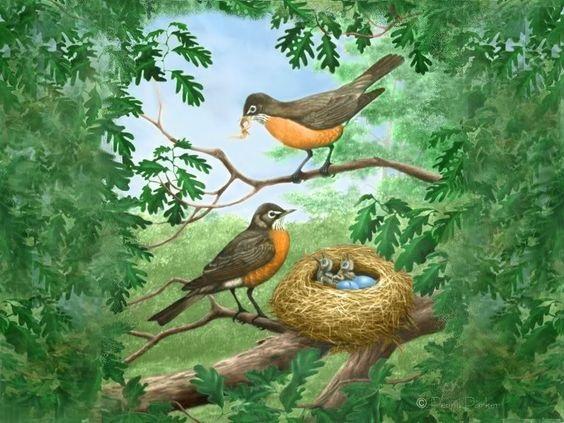 Гнездо на дереве - красивые рисунки для детей (20)