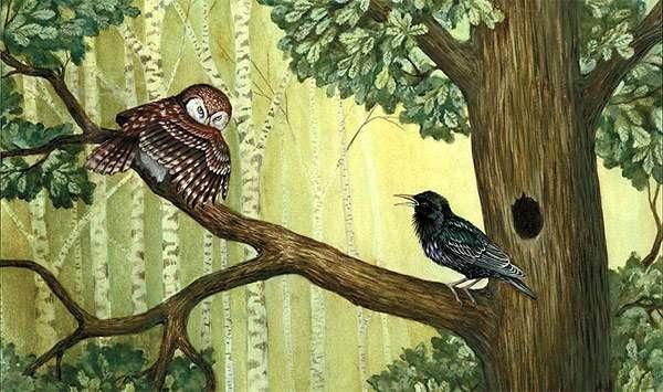 Гнездо на дереве - красивые рисунки для детей (21)